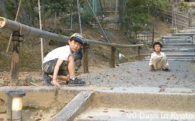 Two brothers in Kodai-ji temple helped me to  collect leaves from the gravel.