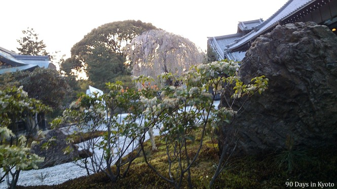 Garden on the south side of the Hojo (Main Hall)