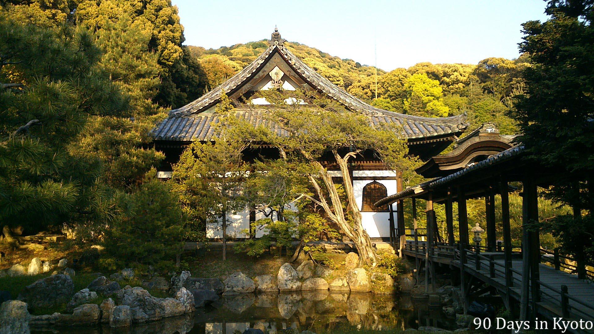 japanese gardens – 90 days in Kyoto