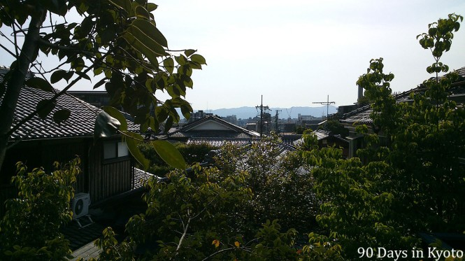 Once we took off some branches, we could see Kyoto and a fresh breeze of air now and then made the  work less tiring